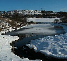 Frozen lake by judith murphy