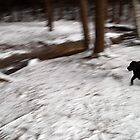 Running Into View by Darren Buss