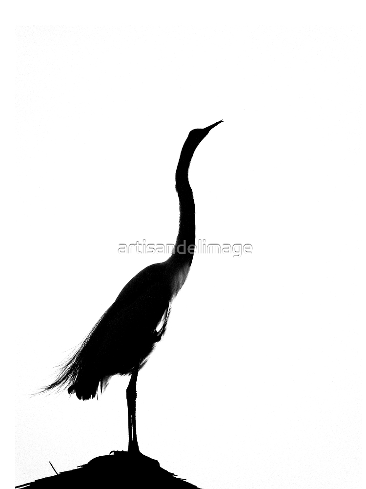Silhouette by artisandelimage
