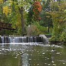 Balls Falls Park, Ontario, Canada by AnnDixon