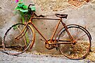 Ready for the tour of Italy? Bicycle, Asolo, Italy by Andrew Jones
