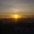 foggy january morning by Cheryl Dunning