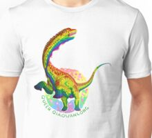 Queer Qiaowanlong (with text)  Unisex T-Shirt