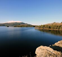 Muckross View by John Quinn