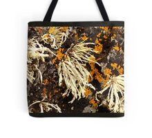 Seaweed And Rust...............................Most Products Tote Bag