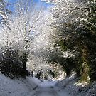 Winter Lane by mikebov