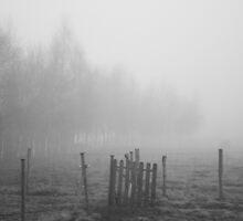 Misty Fields by curiouscat