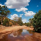 Reflections of the Outback by Katherine Williams