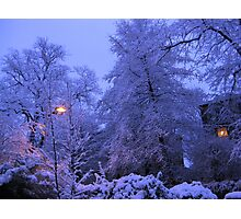 NARNIA WINTER Photographic Print