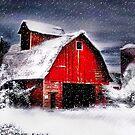 Snowfall  by Nadya Johnson
