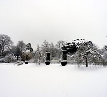 The Winter Garden by Tom Clancy