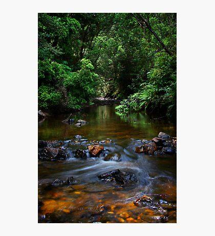 Little Creek, Phantom Valley Photographic Print