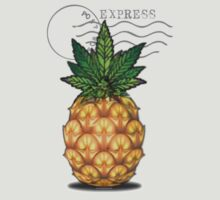 Pineapple Express by kushcoast