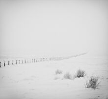 Did someone order a side dish of winter? by clickinhistory