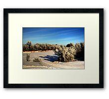 NATURE'S BRUSH  Framed Print