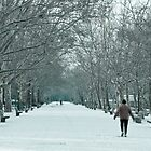 Winter Walk--Riverside Park New York City in Snow by Dave Bledsoe