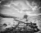 A winter's dream by clickinhistory
