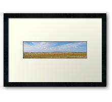 Hay Bales Panorama Framed Print