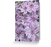 A Blanket of Clematis Greeting Card