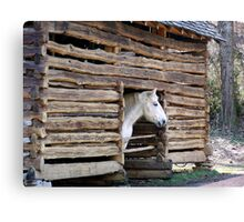 Hand hewn log barn of the 1800's! Canvas Print