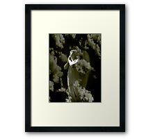 Light In The Darkness Angel Framed Print