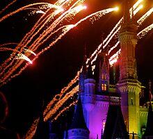 Fireworks  by Elizabeth  Hubbard