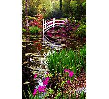 Magnolia Bridge No. 1, Charleston, SC Photographic Print