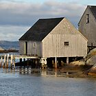 Peggy&#x27;s Cove - Nova Scotia by Barbara Burkhardt