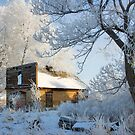 Old Shed on Ice by Ken Fortie