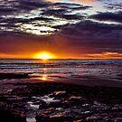A New Dawn by Lynne Morris