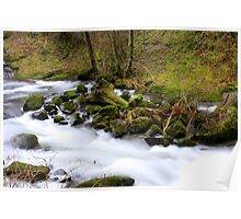 Rapids..Sweet Creek..Oregon Poster