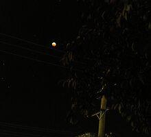 Lunar Eclipse by Jenni Greene