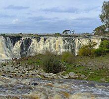 Hopkins Falls near Warrnambool, south west Victoria, Australia by Roger Neal