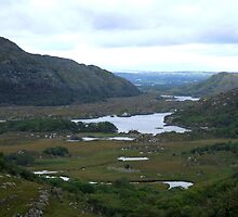 Ladies View, Ring of Kerry, Ireland by CFoley