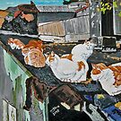 Nap of Kitties on a Torn Roof by Nira Dabush
