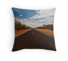 The Road Just Travelled Throw Pillow