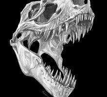 T-rex skull by Ashley Dadoun