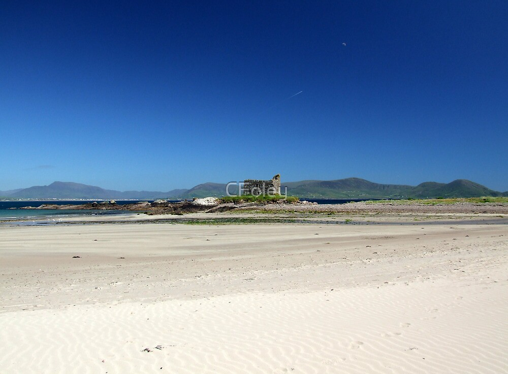 Ballinskelligs Castle in Summer -  Ballinskelligs, Kerry, Ireland. by CFoley