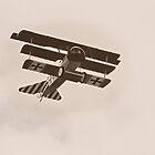 Vintage Tri-Plane by Nick Sage
