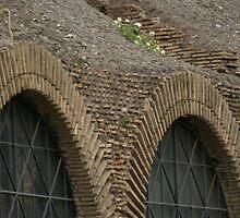 Colosseum interior view detail, Rome by BronReid