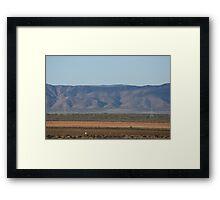 Redbanks facing the Flinders Ranges Framed Print