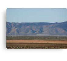 Redbanks facing the Flinders Ranges Canvas Print