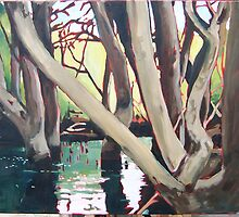 Mangroves by Pete Gailey
