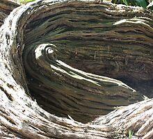 Trippy Tea-Tree 3, by Emma Delladio
