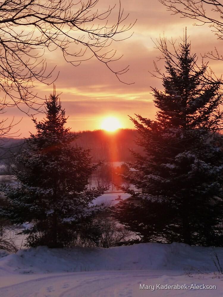 Winter Sunset by Mary Kaderabek-Aleckson
