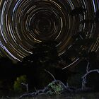 Star Trails at Flinders Chase #2 by Wayne England