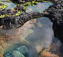 Tidal pool by Gaspar Avila