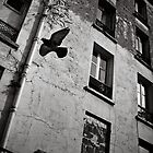 Flyin' Home - Clichy, France - 2009 by Nicolas Perriault