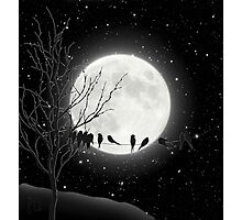 Moon Bath, birds on a wire, harvest moon Photographic Print