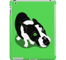 Mr Bull Terrier Green iPad Case/Skin